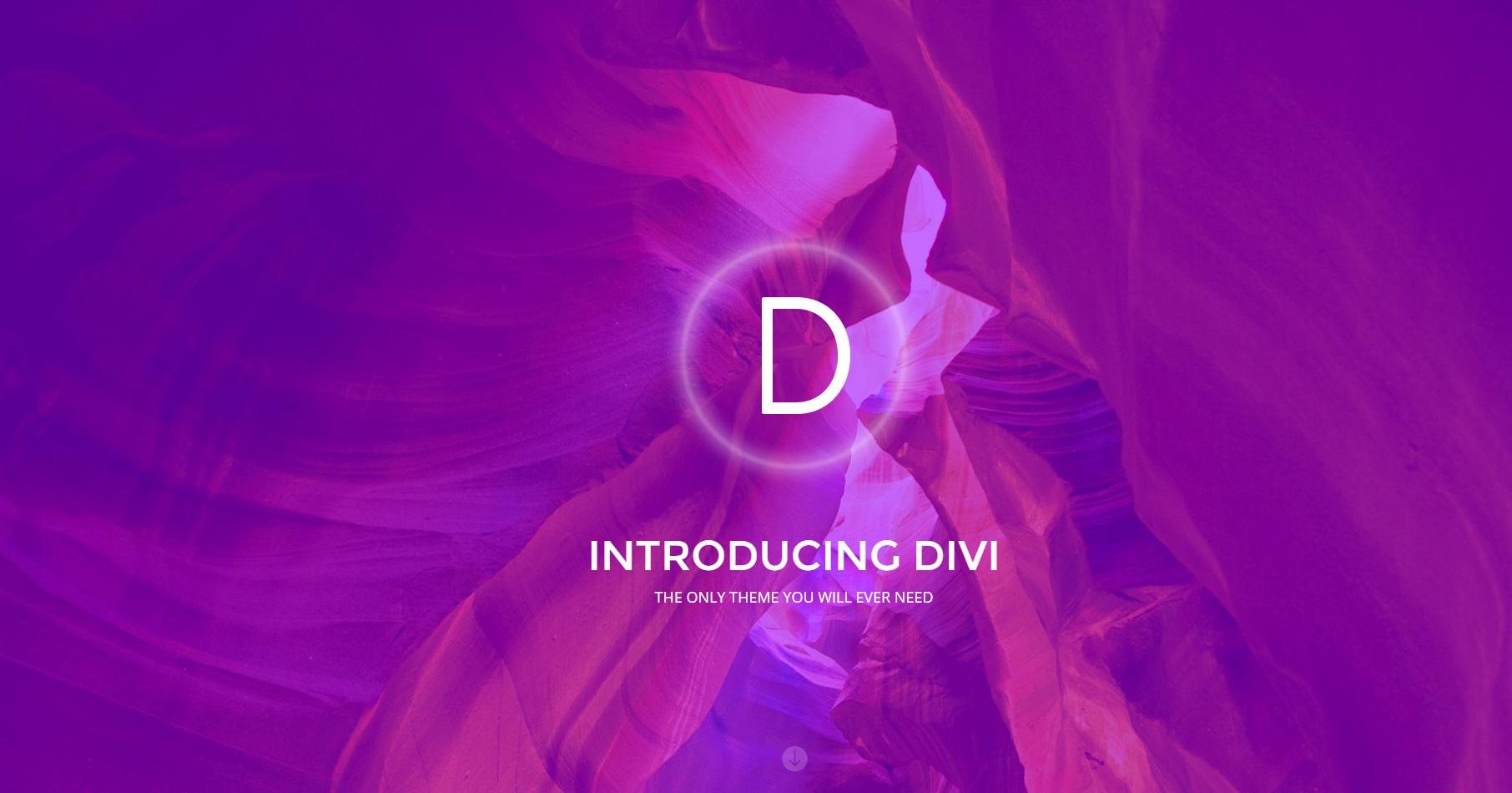 Wpion review divi multipurpose wordpress theme by elegant - Divi elegant theme ...