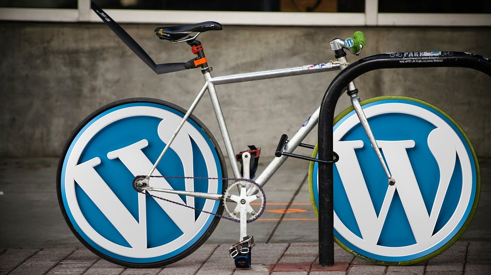 WordPress SEO Strategy